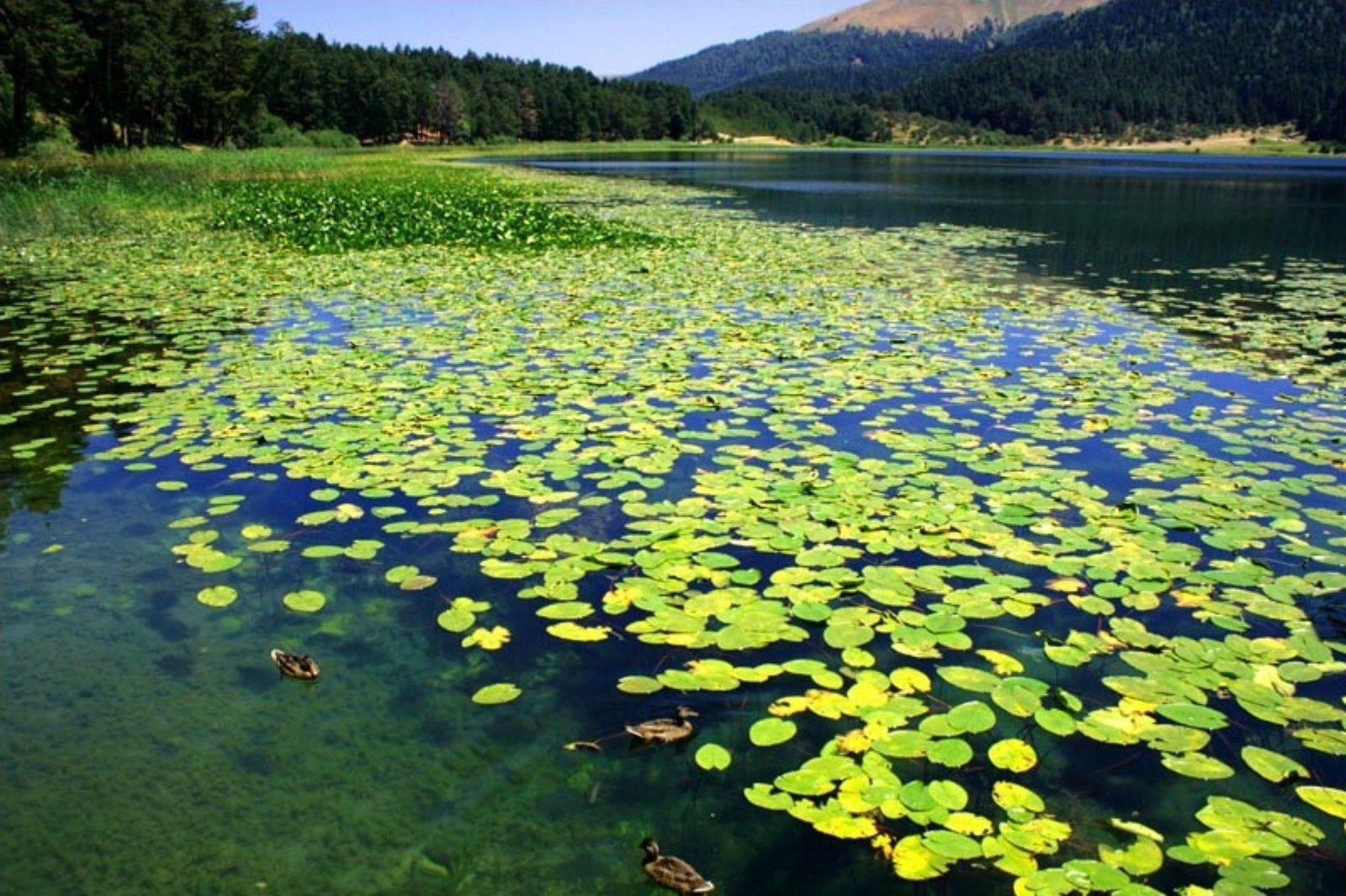 أجمل ثلاث بحيرات في تركيا ....